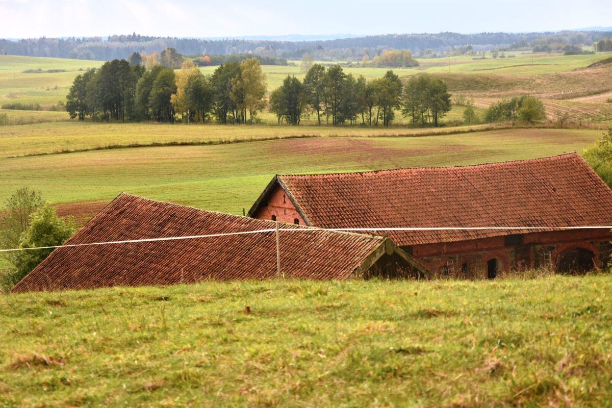 Jesień na Wzgórzach Szeskich (Siedlisko pod Gołdapią)