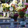 Wszystkich Świętych: jak dojechać na cmentarze