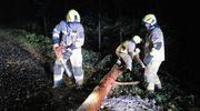 Strażacy usuwają skutki wichury [ZDJĘCIA]