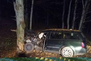 Kierowca uderzył w drzewo. Został przetransportowany do szpitala