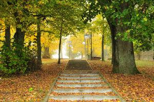 Wymień zdjęcie na prenumeratę: Park w Wydminach