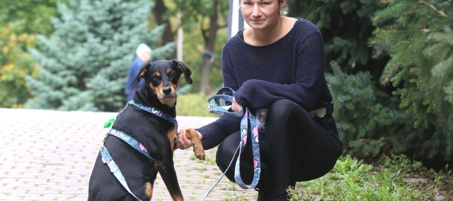 Agata Jastrzębska zauważa, że coraz więcej ludzi chce szkolić swoje psy