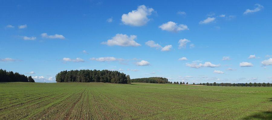 Inwestycja ma być zlokalizowana przy węźle Rączki na S7, ok. 1,4 km od Frąknowa i 1 km od Dobrzynia