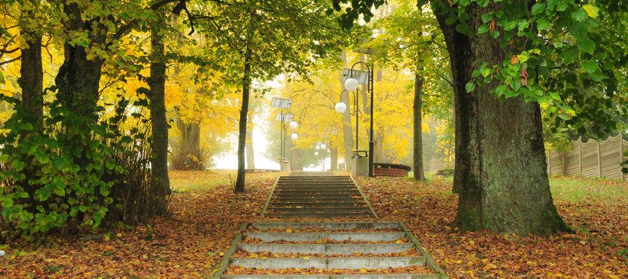 Park w Wydminach