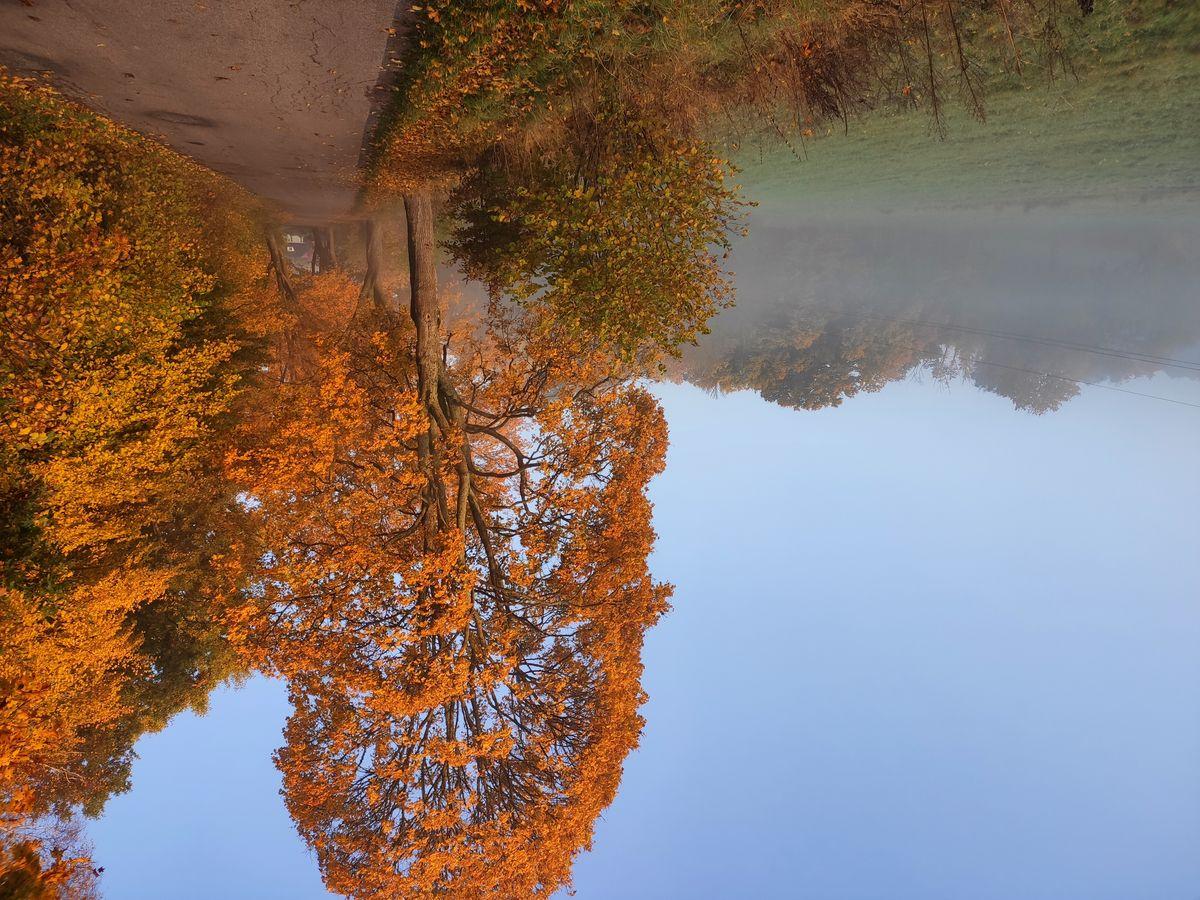 Jesień o poranku. Droga Bolejny - Żelazno koło Nidzicy
