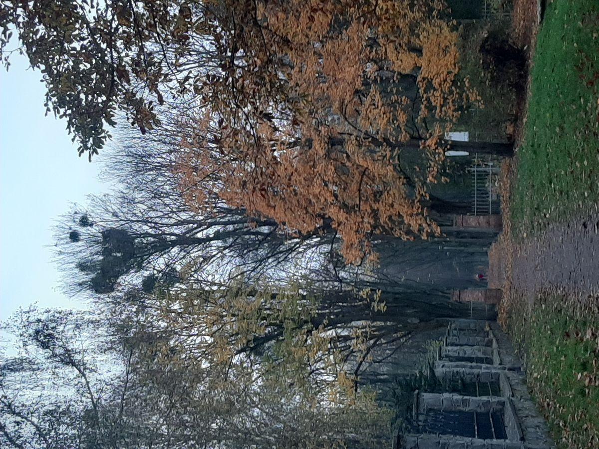 Jesień w Olsztynie. Wejście na cmentarz przy kościele św. Józefa