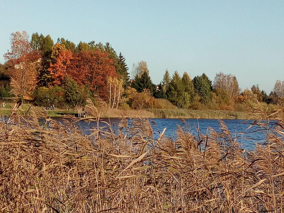 Jezioro Dywickie