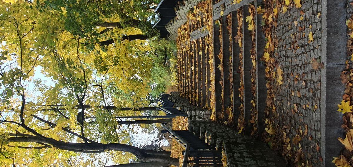 Schody przy kościele Garnizonowym w Olsztynie
