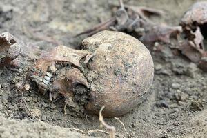 Prace poszukiwawcze na terenie dawnego Cmentarza Mariackiego w Olsztynie [ZDJĘCIA]