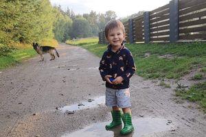 Zimowy Brzdąc 2020: Kajetan Trzaska z Dziarnówka