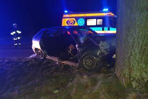 Pijany 34-latek uderzył w drzewo, pasażerka trafiła do szpitala