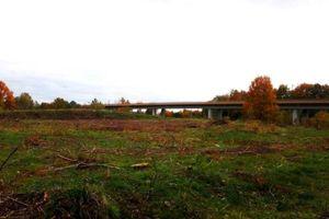 30 hektarów lasów pod kolejny etap S16