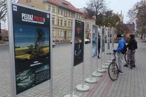 Najlepsze polskie pejzaże można oglądać w plenerze [GALERIA]