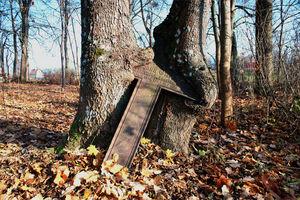 Wymień zdjęcie na prenumeratę: Cmentarz Ewangelicki w Targowie