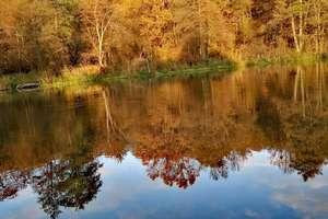 Zdjęcie Tygodnia nr 197. Jesień na stanicy wodnej w Stopkach