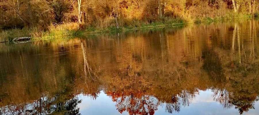 Jesień w stanicy w Stopkach.