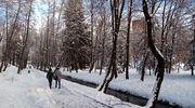 Zima w kalendarzu i w realu, czyli fotograficzne spojrzenie