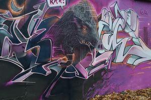 Gdzie się podziały olsztyńskie dziki? Zostaną po nich murale i zdjęcia