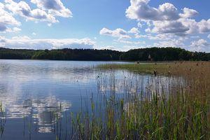 Wymień zdjęcie na prenumeratę: Jezioro Łańskie