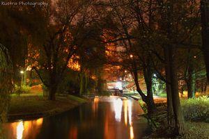 Wymień zdjęcie na prenumeratę: Nocny Olsztyn
