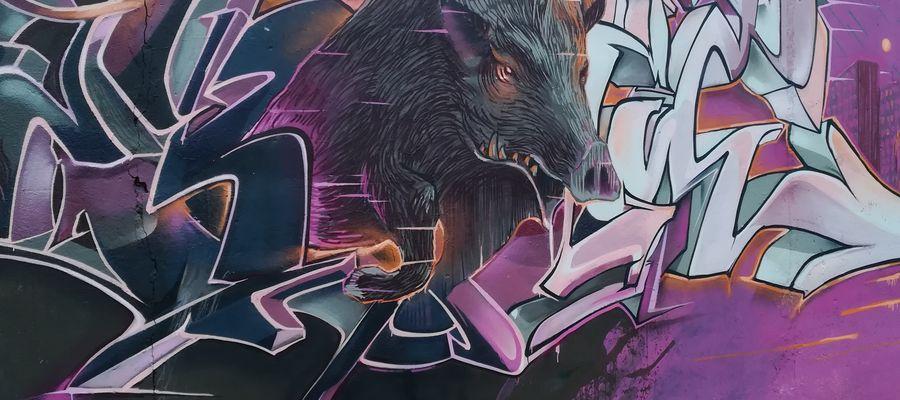 Olsztyńskie dziki zainspirowały olsztyńskiego artystę o pseudonimie Sekret, który uwiecznił ich wizerunki na ścianie garażu przy ulicy Mariańskiej