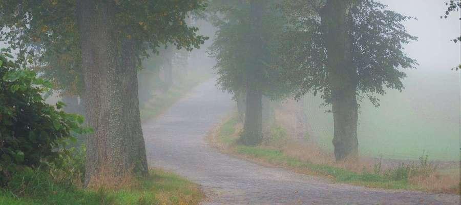 Droga do Markin.