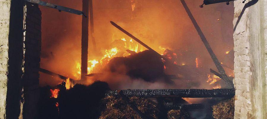 Śledczy postawili sprawcy trzy zarzuty: 2 za zniszczenie poprzez podpalenie budynków gospodarczych oraz jeden za usiłowanie zniszczenia mienia poprzez spalenie domku letniskowego