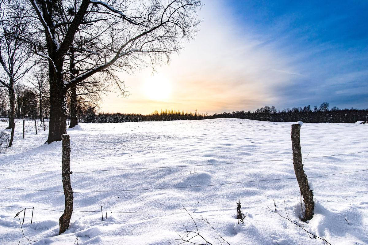 Okolice Górowa Iławeckiego