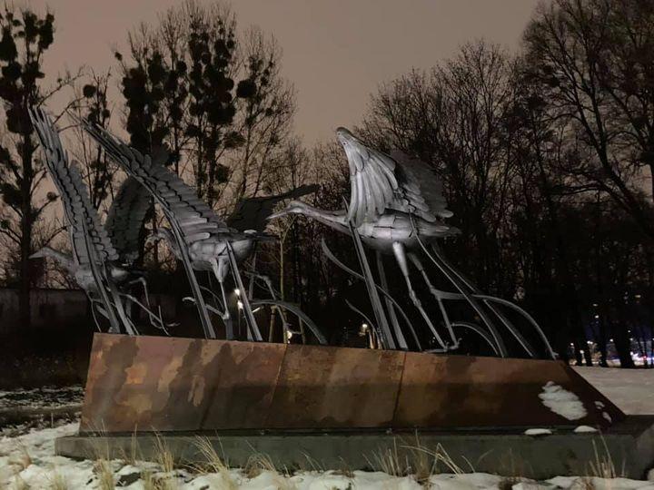 Żurawie z olsztyńskiego Parku Centralnego