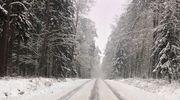 Nidzicka za zdjęcie: droga Napiwoda-Wikno