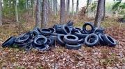 Lasy toną w tonach śmieci [SONDA]