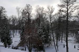 Park przy Gdańskiej zostaje, ale projekt wycofano