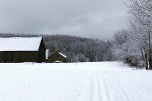 Nie brakuje śniegu na Wzgórzach Dylewskich. Nic tylko biegać na nartach