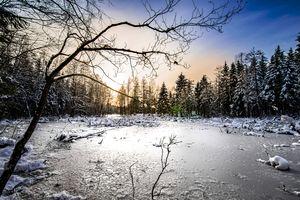 Goniec za zdjęcie: okolice Górowa Iławeckiego