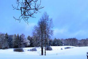 Goniec za zdjęcie: Kamińsk