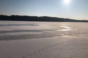 Nidzicka za zdjęcie: jezioro Omulew