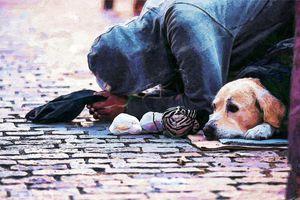 Nie bądźmy obojętni na bezdomnych. Jeden telefon może uratować ludzkie życie!