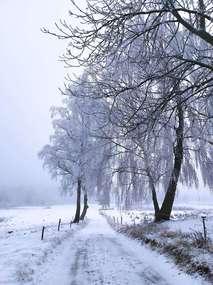 Zimowa, wiejska droga.