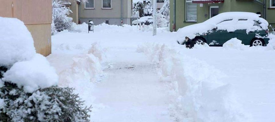 Zima luty 2019