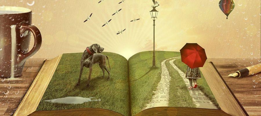 Można oddać do bibliotek przeczytane, niepotrzebne już książki dla innych dzieci