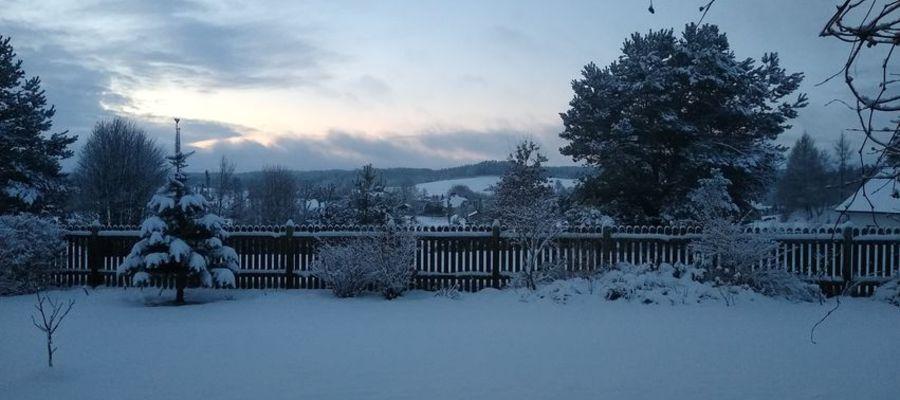 Prenumerata za zdjęcie. Zimowy poranek w Miłogórzu