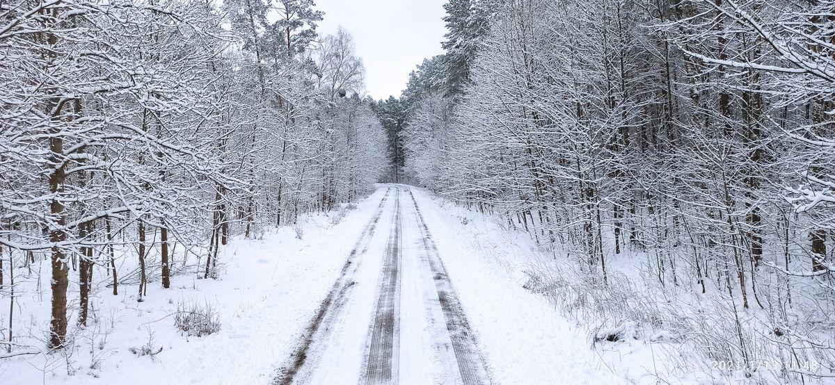 W drodze do Szymek