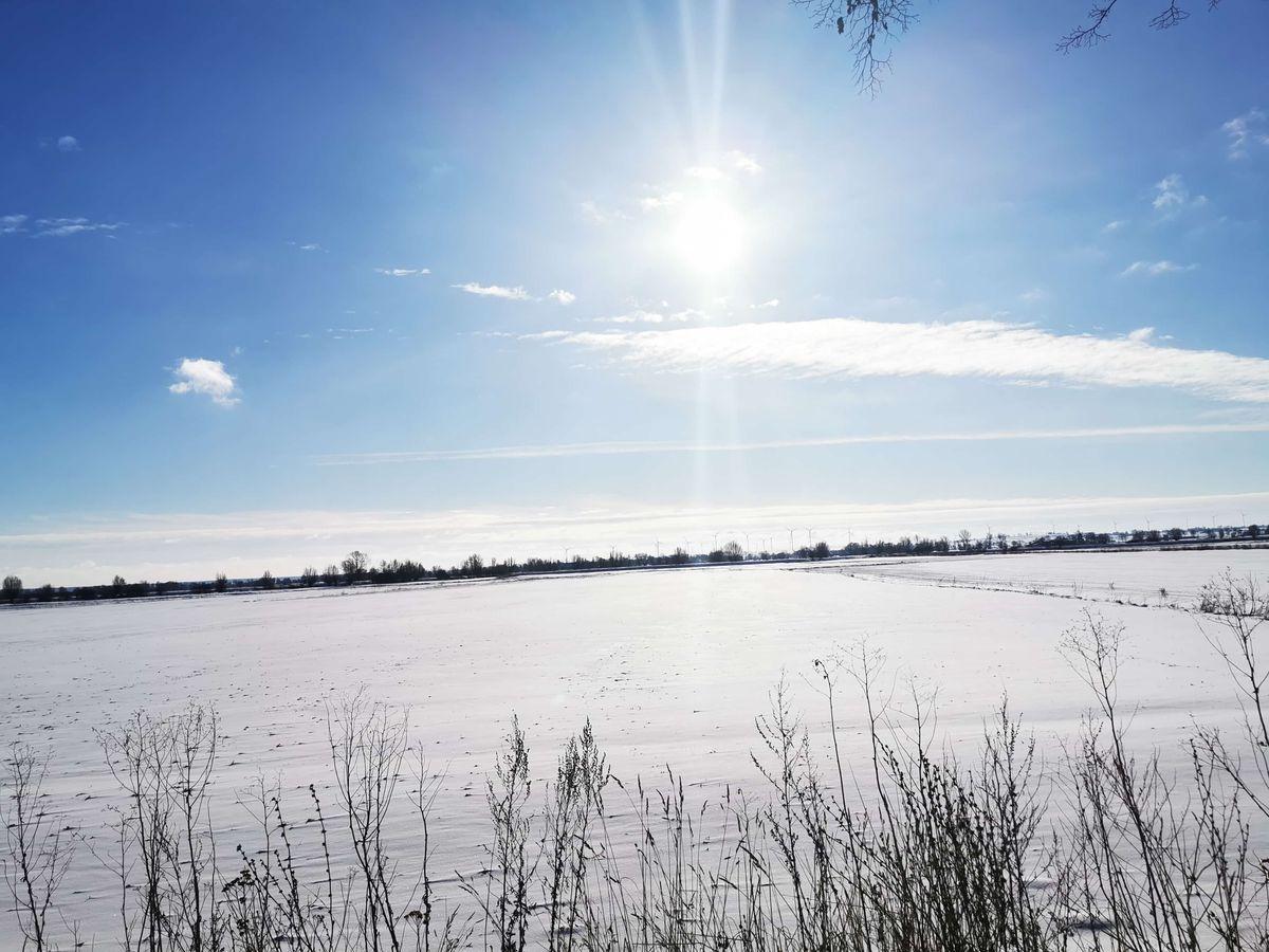Zimowy spacer — Rozgart (powiat elbląski, gmina Gronowo Elbląskie)