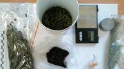 28- latek przechowywał amfetaminę, marihuanę i haszysz. Twierdził, że znalazł go na grzybach