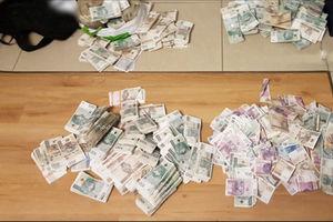 Funkcjonariusze SG w Bezledach rozbili grupę przestępczą.