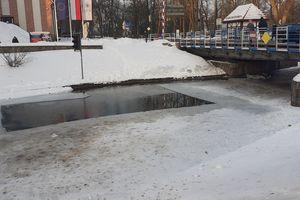 Pani Krystyna uratowała kaczki na Kanale Łuczańskim