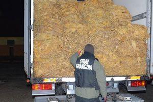 Rozbili zorganizowaną grupę przestępczą. Skarb Państwa stracił 20 mln zł