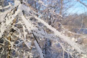IKAT za zdjęcie: Baranówka