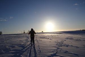 Goniec za zdjęcie: na nartach