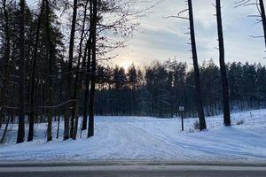 Nielegalne wjazdy quadami do wilkaskiego lasu